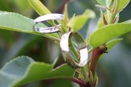 brook-hotel-wedding-events-10-83961-OP