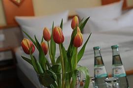 95233_006_Guestroom