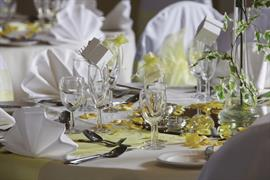 hotel-smokies-park-wedding-events-03-83708