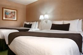 05521_006_Guestroom