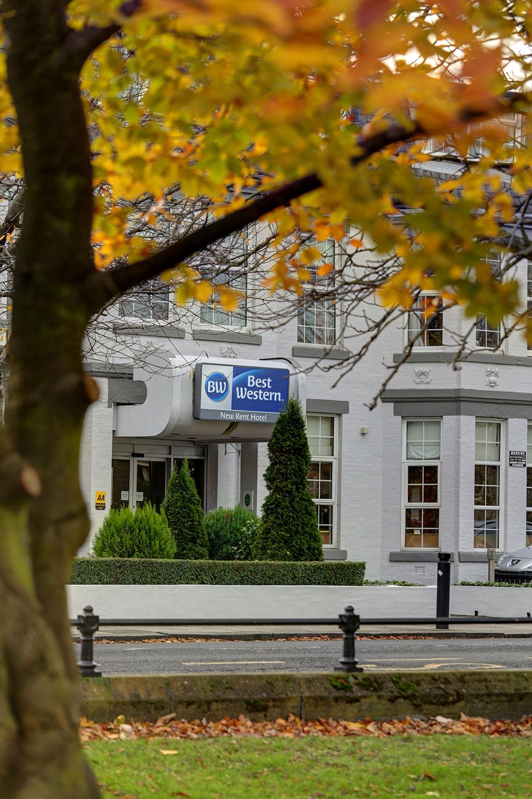 Best Western Hotel Room: Best Western New Kent Hotel