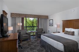 38154_003_Guestroom