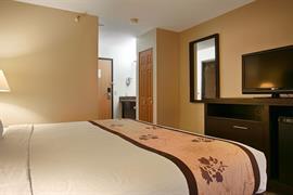 24135_007_Guestroom