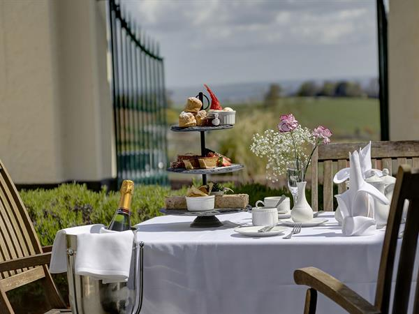 lord-haldon-country-house-hotel-dining-17-83874