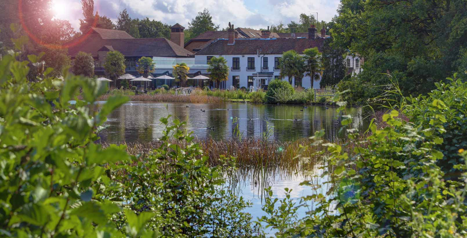 frensham-pond-hotel-grounds-and-hotel-31-83620