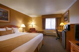 38107_003_Guestroom