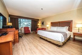 66023_001_Guestroom