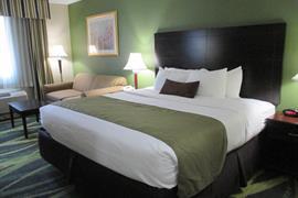 39133_006_Guestroom