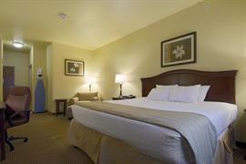 44609_006_Guestroom