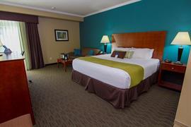 33107_007_Guestroom