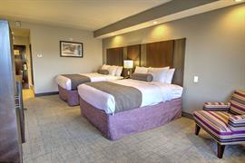 43185_007_Guestroom